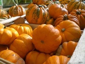 NRW Herbst Erntedank Brauchtum
