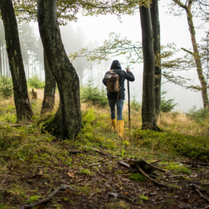 Wellnessurlaub Wandern Rothaargebirge Natur Diedrich