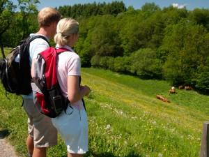 Wandern Schwarzwald Sauerland NRW Herbst Harz Alpen Allgäu