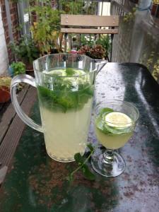 Trinken Sommer Limonade Getränke