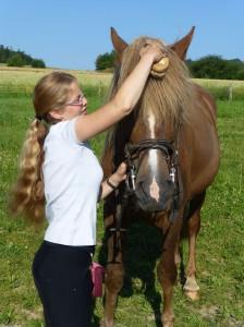 Melanie Eckel mit einem der Finnpferde