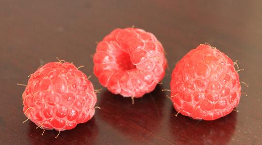 Himbeeren - nur eine Art von vielen leckern Sommer-Beeren