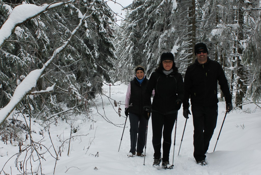 Nordic Waking im Schnee