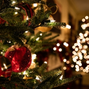 Weihnachten Stressbewältigung Eva