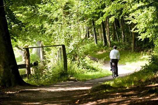 Radfahren: Radtour nahe des Hotel Birke in Kiel