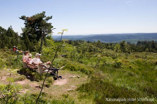 Schöner Ausblick bei Fitness-Wanderung im Nationalpark-Hotel Schliffkopf