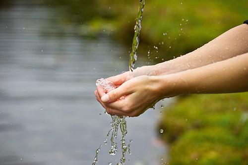 Wasser das Lebenselixier