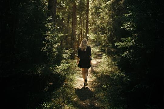 Ein Spaziergang im Wald tut gut.