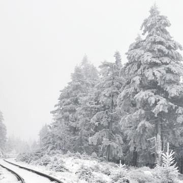 wohlfühlen winterdepression Winter Wellness Miriam Ernährung